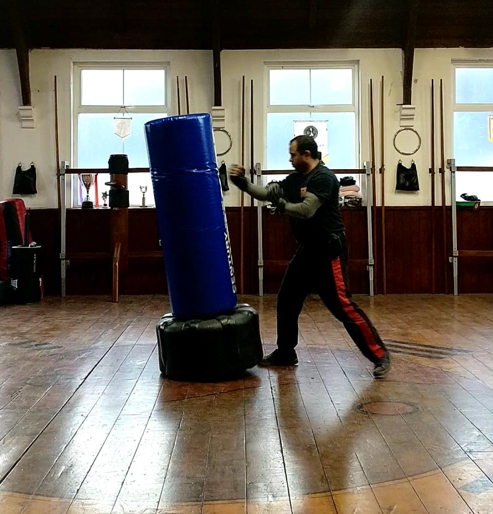Wing Chun Punching